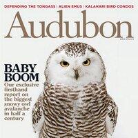 Audubon Magazine | Social Profile