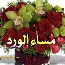 استقدام من مصر (@01227472040) Twitter