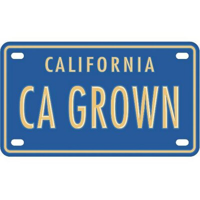 CA GROWN | Social Profile