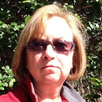 Lynn Meyerson | Social Profile