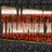 Thrashifice profile
