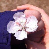 봄_은_엘리 | Social Profile