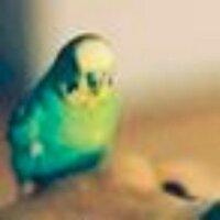 エディアカラ生物群 | Social Profile