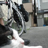 バイオ(インフォ)えるらさん | Social Profile