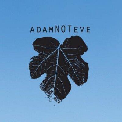 adamnoteve | Social Profile