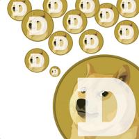 DogerainApp