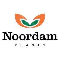 NoordamPlants