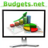 BudgetsNetwork profile