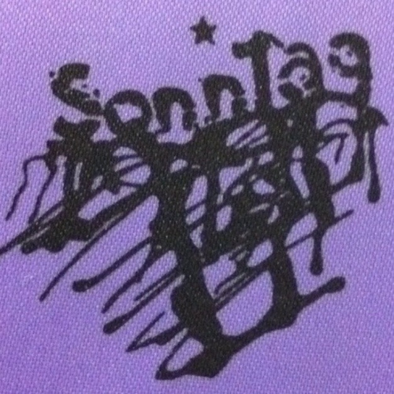 Sonntag-Fujikawa Social Profile