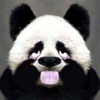 小新 | Social Profile
