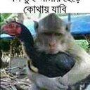 Md, Anwar Hossain (@01760887795) Twitter