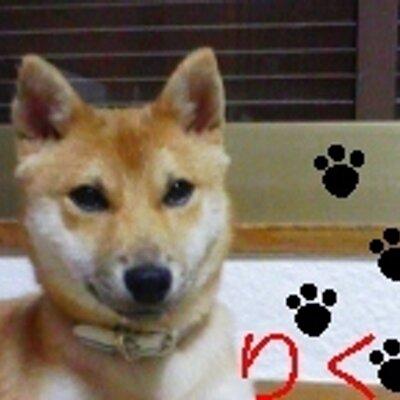 ばっしぃ〜 | Social Profile