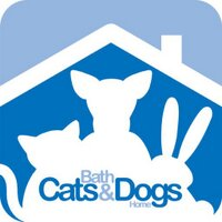 Bath Cats &Dogs Home | Social Profile