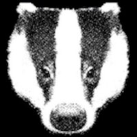 BadgerlandCoUk | Social Profile