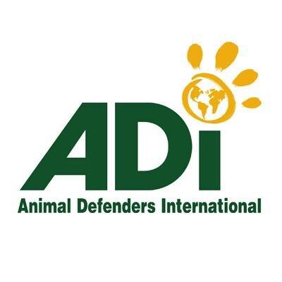 ADI Social Profile