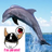 @dolphin_42