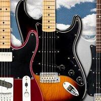 Fender Latino | Social Profile