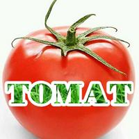 @estomatte
