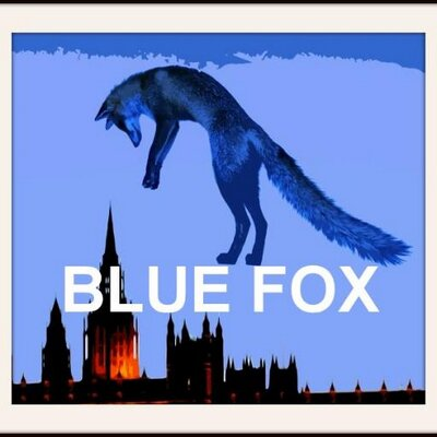 Blue Fox | Social Profile