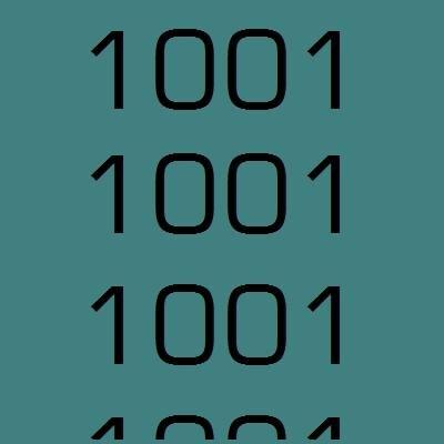 1001noisycamera Social Profile