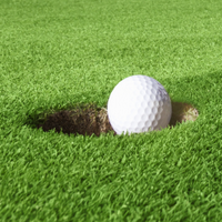 Golf_2_Win