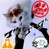 たぁぁ(´・ω・`)… | Social Profile