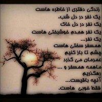 @esmaeil21312
