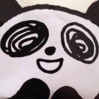 ぴよこ | Social Profile
