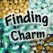Sarah @Finding Charm Social Profile