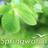 BBC Springwatch