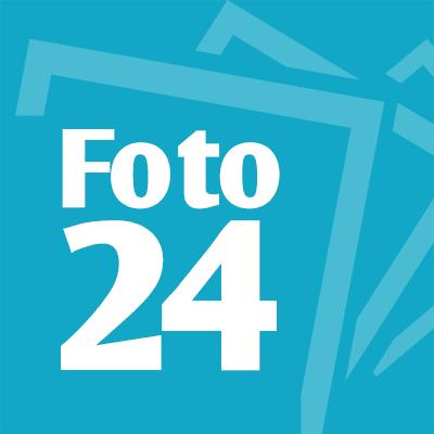 24 фотос