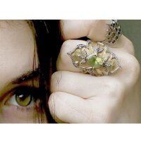 Claire Kislinger | Social Profile