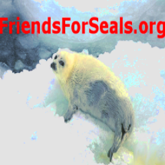 FriendsForSealsOrg Ⓥ Social Profile
