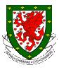 Welsh Football News Social Profile