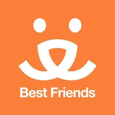 Best Friends | Social Profile