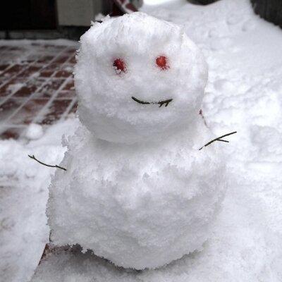 雪だるまの人 | Social Profile