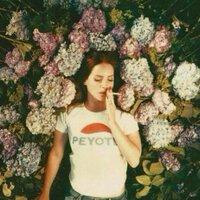 Lana Del Rey Updates | Social Profile