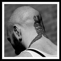 Michael Cohn | Social Profile