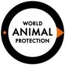 Animal Protection NL