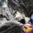 The profile image of magpie_sendai