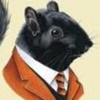 The Black Squirrel | Social Profile