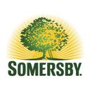 Photo of SomersbySrbija's Twitter profile avatar
