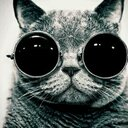 القط الجميل (@00a66f90f3bf4c3) Twitter