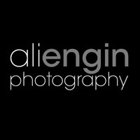 Ali Engin | Social Profile