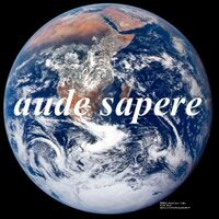 Ann Sorrell   Social Profile
