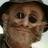 ney_robsonm profile