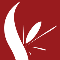 Spark Freedom | Social Profile