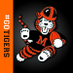 Massillon Tigers's Twitter Profile Picture