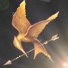 Hunger Games Trilogy Social Profile