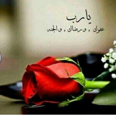 ابو بندرالديحاني | Social Profile